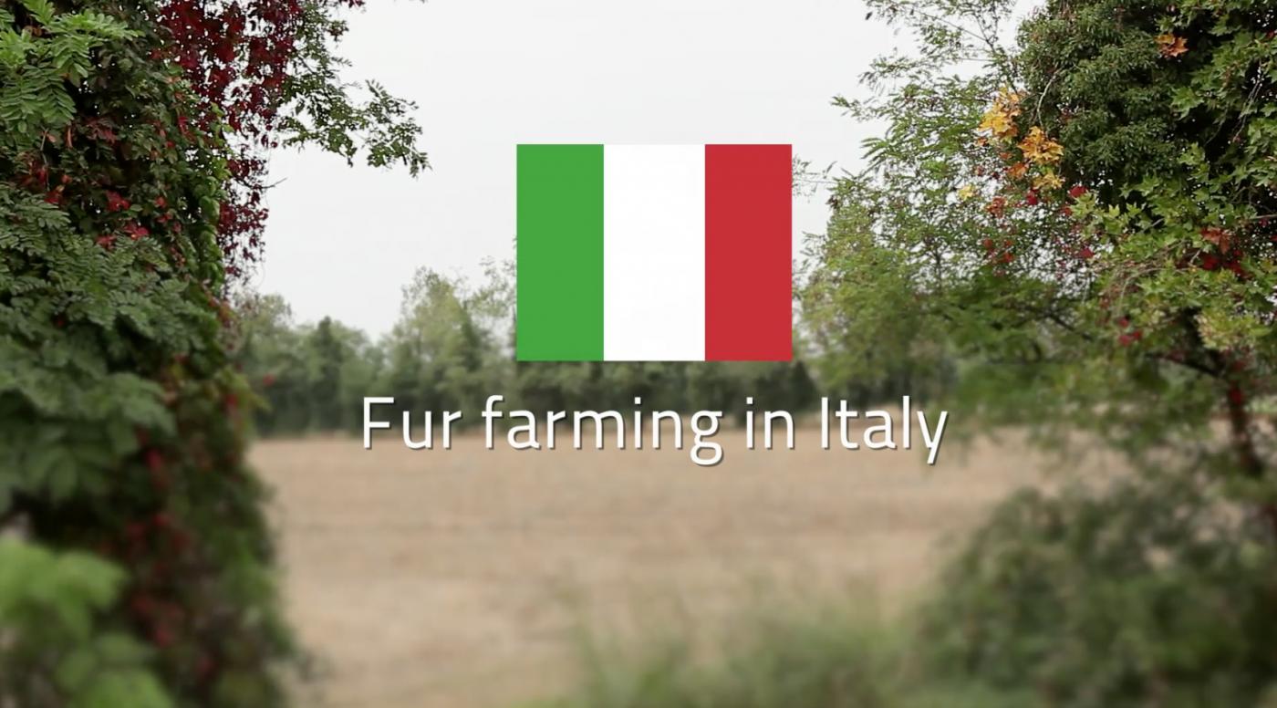 Silvia Bolzoni, Fur Farmer, Italy