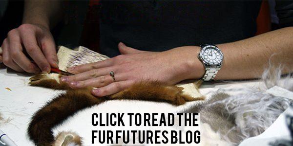 Fur Futures Blog, We Are Fur