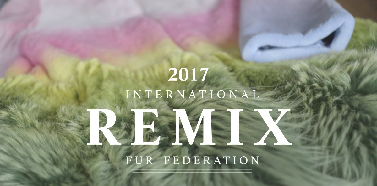 Remix 2017 Finalists