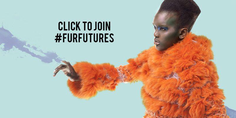Fur Futures