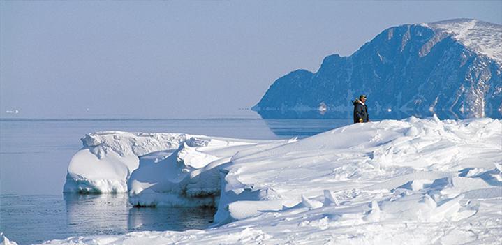 Newfoundland, Faux Fur Poisonous microfibres