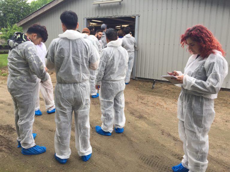 farm visit, ninx flanagan